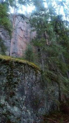 Kallio. Puut. Korkea kallioseinämä.