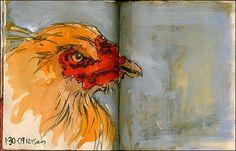 chicken sketches - Google Search