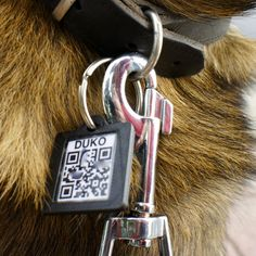 QR dog tag  ----  Tutorial on how to make your own.  Most people can figure this out now, put info about their meds and other stuff beyond the basics on there.
