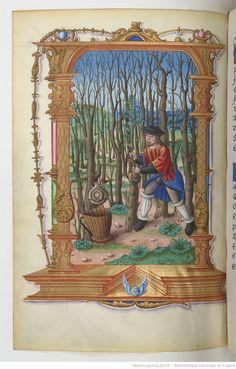 Chants royaux sur la Conception, couronnés au puy de Rouen de 1519 à 1528. Date d'édition : 1501-1600 Type : manuscrit Langue : Français Format : Vélin, miniatures Droits : domaine public Identifiant : ark:/12148/btv1b8539706t