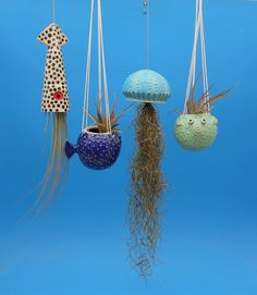 Small, Hanging Puffer Fish Planters, Air Plants, Succulents - All For Herbs And Plants Fish Crafts, Clay Crafts, Pop Cans, Idee Diy, Hanging Planters, Wall Planters, Air Plants, Crafts For Kids, Thing 1