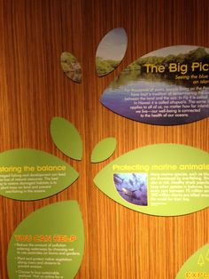 National Aquarium Size Chart En Zac Venue Graphics Pinterest