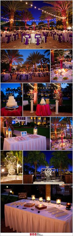 Lighting ideas. Love the lights strung between the trees at this reception site, love love love <3