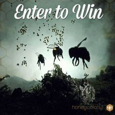 There is only a few more hours left to enter for a chance to win our renowned Vanishing of the Bees #Documentary! Narrated by Ellen Page and directed by Maryam Henein, this is a must-see, must-have film!  Enter here: http://woobox.com/pn84zs  #SavetheBees #giveaways