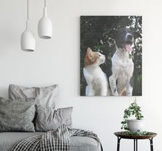 """Happy """"Love your Pet day""""!  Treat your furry friend today more than ever. How about lovely canvas to immortalize the magnificence of your """"fur baby"""" ? https://www.canvasonsale.com/ #petday #lovepets #canvasonsale #photocanvas"""
