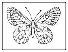 Printable Butterfly Coloring Pages | Free Flowers Coloring Pages – Florals and Garden Flower Printable