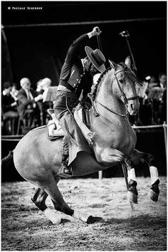Show with the garrocha. Traditionally used to keep the Toros Bravos at a distance. Now used as a show element to entertain crowds and show the harmony between rider and horse.
