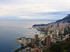 Monte Carlo - Reason