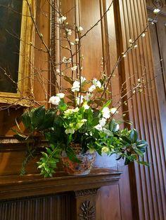 Mantle arrangement of Quince, tulips, sweet peas, helebores, garden greens.   In bloom, ltd.