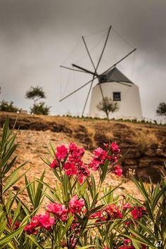 Castro Marim, Algarve, Portugal Photo