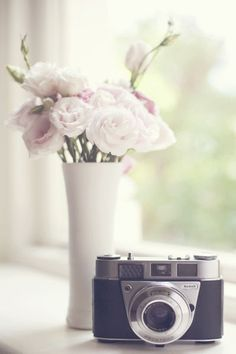 delicate flowers and vintage cameras, so dainty
