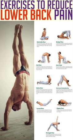 Whether from an injury or degenerative disease (such as osteoarthritis), most cases of back pain can be reduced with regular exercise and tailored workouts. Stretching, strengthening, and conditioning exercises can result in stronger muscles that support Yoga Fitness, Physical Fitness, Health Fitness, Fitness Exercises, Muscle Fitness, Mens Fitness Workouts, Fitness Tips For Men, Fitness Men, Health And Fitness Articles
