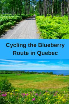 Cycling the Blueberry Route Around Lac-Saint-Jean, Quebec - allow three days to do the whole route. You can get people to move your baggage Lac Saint Jean, Pure Fun, Road Cycling, Cycling Tours, Bicycle Maintenance, Bike Trails, Hiking Trails, Canada Travel, Worlds Of Fun