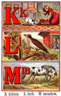 1902 Alphabet book, I love the vintage drawings Printable Alphabet Letters, Typography Alphabet, Alphabet Cards, Alphabet Book, Animal Alphabet, Vintage Children's Books, Vintage Cards, Vintage Paper, Vintage Postcards
