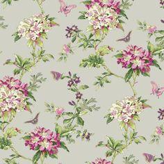 Wallpaper, Designer Wallaper, Wallpaper Borders, Contact Paper, Wall paper or sale today