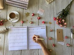 Time to organize! Ladypreneur Life Organizer + Day Director to the rescue
