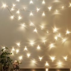 Illuminate your next big event or decorate your room with the Kikkerland Design 100 LED Mini Bulb White Lights. These decorative lights provide a blank canvas for all of your lighting needs creating a sophisticated ambiance at special events. Twinkle Lights Bedroom, Room Lights, Novelty Lighting, College Dorm Decorations, Frame Wall Decor, Aesthetic Room Decor, Pretty Lights, Decorate Your Room, Lights Background
