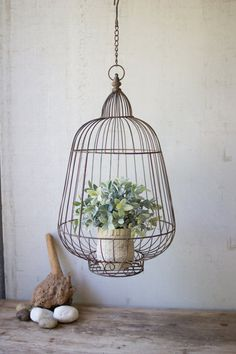 Buy Hanging Rustic Wire Bird Cage Plant Holder at lowest price and great service. Hanging Bird Cage, Diy Hanging, Hanging Planters, Bird Cages, Hanging Basket, Farmhouse Living Room Furniture, Country Furniture, Bedroom Furniture, Modern Farmhouse Kitchens