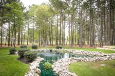 THE SPRINGS in The Woodlands.  This wedding venue in Houston is gorgeous.  With it's ponds, tall trees, and greenery, it's perfect for any rustic or boho wedding.  Wedding venues, wedding venue ideas, wedding venue texas, outdoor wedding, wedding venue houston, woodsy wedding venue, woodsy wedding ideas.