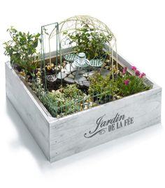 fairy garden in a box - Chasing Fireflies