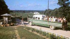comunidades-hippies13