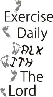 This is a great Wall Praise verse for an excercise room, or fun for a kid's playroom. Can be done in any colors :)