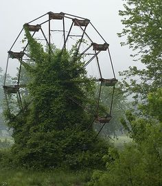 """Ferris wheel--this reminds me totally of the book, """"The Dark and Hollow Places"""" when they go to the ferris wheel at the end and it's all overgrown. When they make them movie, they should film that scene here!!"""
