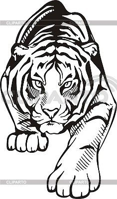 Easy Drawing Of Tiger Tattoo Tiger Stencil, Animal Stencil, Stencil Art, Stencils, Tiger Drawing, Tiger Art, Wood Burning Patterns, Wood Burning Art, Haida Kunst