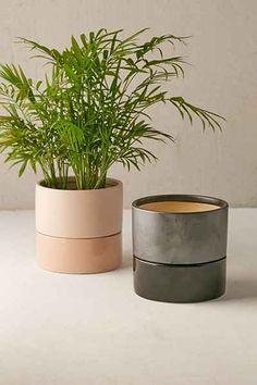 Urban Outfitters Madison 6 Photo 12 of 19 in Tour an Insanely Stylish NYC Loft With Major Scandinavian Vibes. Browse inspirational photos of modern homes. From midcentury modern to prefab housing and renovations, these stylish spaces suit every taste. Urban Outfitters, Apartment Essentials, Plant Shelves, Diy Décoration, Outdoor Plants, Decoration, Home Deco, Interior And Exterior, Interior Design