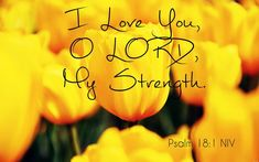 Scripture Quotes, Bible Scriptures, You Are Blessed, Psalms, I Love You, Lord, Inspiration, Biblical Inspiration, Te Amo