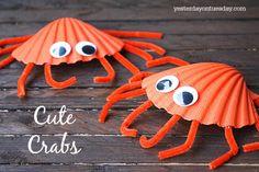 Petits crabes avec des coquillages