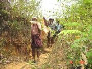 Believe or not this is the situation. They carry patient like this 10 kms walking to reach hospital