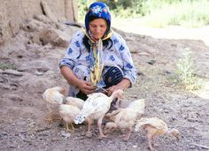 feeding some skinny chickens-Natural light portrait - Hossein-abad-01, via Flickr.