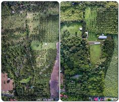 First we farm! Our 4 month worth of work. Whew! . . . #farm #drone #farming I See It, Farming, World, The World