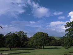 空 2014.08奈良公園
