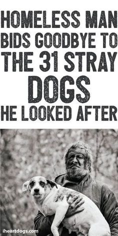 Homeless Man Bids Goodbye To The 31 Stray Dogs He Looked After
