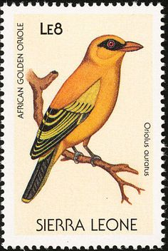 African Golden Oriole stamps - mainly images - gallery format