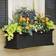 Minimum care window box planting