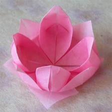 Origami maniacs paper napkin flowers boxes n origomi pinterest origami maniacs paper napkin flowers boxes n origomi pinterest origami napkins and flower mightylinksfo