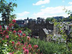View landscape Edinburgh City flowers