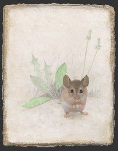 Document sans nom Animal Paintings, Animal Drawings, Art Et Nature, Silverpoint, Year Of The Rat, Sweet Soul, Cute Mouse, Art Et Illustration, Animal Illustrations