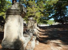 Phaselis - The avenue leading to the South Harbour Phaselis was the first stop on our Kemer to Kekova #GuletVoyage