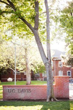 UC Davis - home away from home