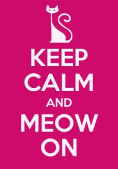 keep calm and meow on