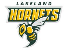Hornets logo for sale by Matt Walker