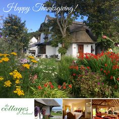 Happy Thanksgiving one and all. Giving thanks today for our wonderful cottages and for the privilege of sharing this superb little haven with so many wonderful guests from all over the world!