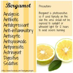 Bergamot Essential Oils of my favorites! Essential Oils Guide, Essential Oil Uses, Natural Essential Oils, Bergamot Essential Oil, Tea Tree Essential Oil, Natural Healing, Natural Oils, Healing Herbs, Doterra Essential Oils