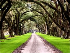 Tomotley Plantation, Yemassee South Carolina via Brandon Coffey's flickr stream.