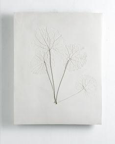 """Charlotte Bricault expose """" Vestiges """" à l'Orangerie de Berne. Elle réalise un """"herbier"""" en céramique grâce à l'impression de plantes sauvages. Le processus fait écho à la fossilisation, traces de vie organique devenues archives du passé. Les plantes adventices, appelées """"herbes folles"""", sont celles qui ont été sélectionnées. Elles sont spontanées et poussent selon des critères sauvages. Ces fossiles sont un antonyme mettant en parallèle le passé et le présent, la culture et la nature."""