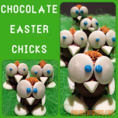 Chocolate Easter Chicks (using Cadbury Creme Eggs!) – Jenni